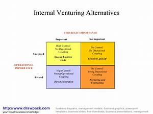 Venturing Alternatives Matrix Diagram