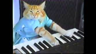 keyboard cat keyboard cat dubstep remix by the wubmachine the