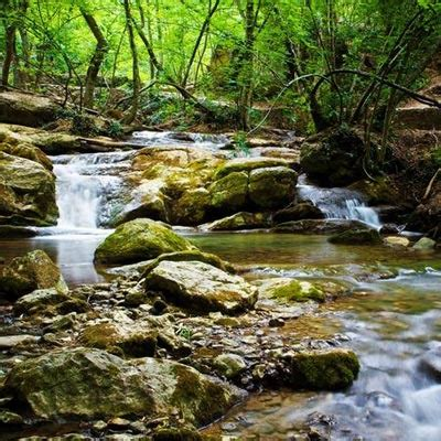 Beauty of Nature Poems - Poetry on Beautiful Nature