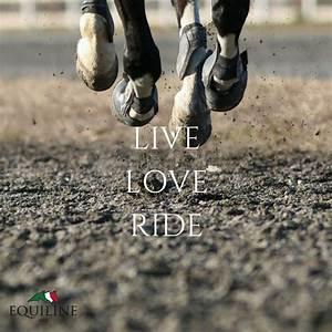 72 best Horse Q... Ride Horse Quotes