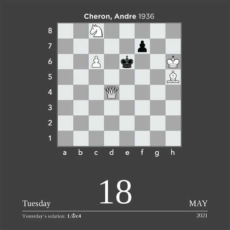 chess  day  day calendar book summary video