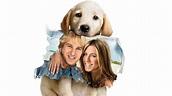 Marley & Me   Movie fanart   fanart.tv