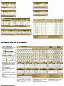 Easton Arrow Spine Chart Easton 2004 Charts