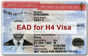 H4 ead faqs common h4 ead questions answered for H4 ead documents