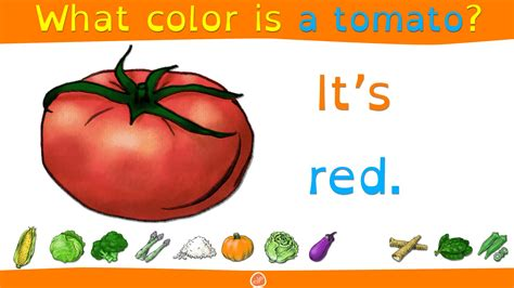 English Food Vocabulary and Color Practice for Kids What