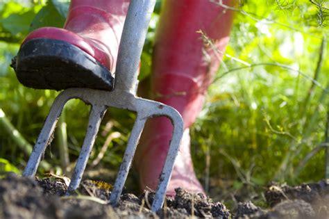 Garten Im Herbst Vorbereiten by Den Garten Im Herbst Bepflanzen Auf Den Fr 252 Hling Vorbereiten