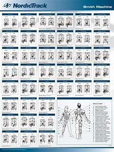 Nordictrack E8200 Smith Machine Exercise Chart