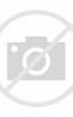 View of Prague Castle, St Vitus Cathedral, Hradcany, Czech ...
