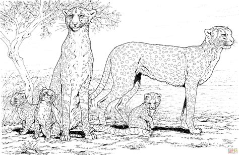 cheetah family coloring page  printable coloring pages