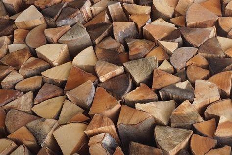 Holz Für Feuerkorb by Rund Um Rosenbogen Und Rankhilfe