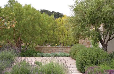 burton landscape pin by olivia luna on xeriscape pinterest
