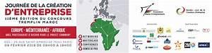 Eurafricaine : définition de EURAFRICAIN, AINE , adj. et subst.
