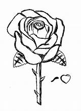 Coloring Rose Roses Pages Printable Sketch Drawings Da Flower Bestcoloringpagesforkids Colorare Tatuaggi Fiori Immagini Sheets Adult Adults Clipart Stencil Books sketch template