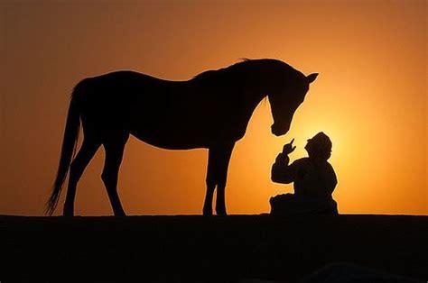 cowboy silhouette images  pinterest cowboys