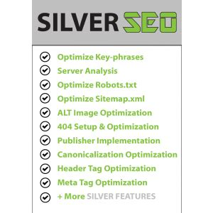 Advanced Search Engine Optimization by Seo Caign Marketing Plan 12 Month Silver Advanced