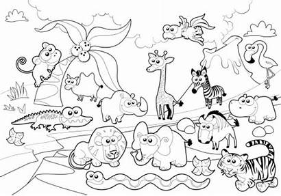 Coloring Zoo Pages Everfreecoloring