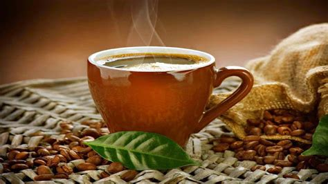 morning  cup  green coffee  hd wallpapers hd