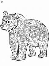 Kleurplaten Malvorlagen Kleuren Coloring Bear Mandala Dieren Zentangles Haare Tekening Afkomstig sketch template
