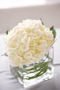 Contemporary Arizona Loft Wedding | White hydrangea ...
