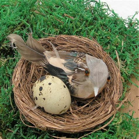 set of six decorative birds nests by just add a dress | notonthehighstreet.com