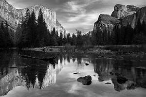 Nature Photography Black And White With Color | www ...