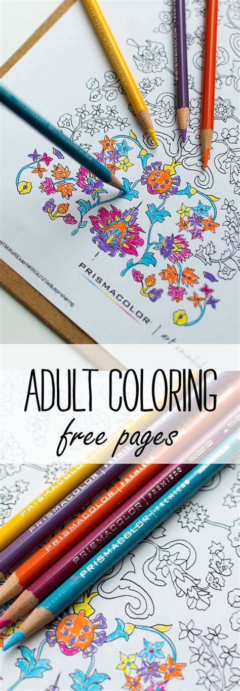 adult coloring pages free printables find