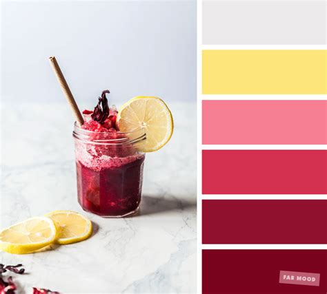 color inspiration berry grey  yellow color palette