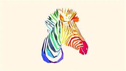Justin Maller Facets Zebra Wallpapers Mkbhd Animal