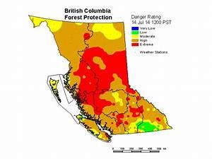 Heat Wave Prompts Dozens Of B C  Wildfires  63 Now Active