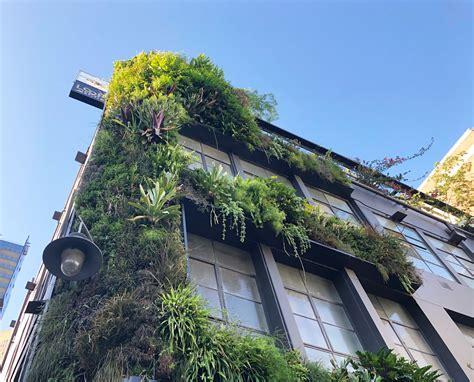 Loop Roof Fytowall Vertical Garden - Fytogreen Australia