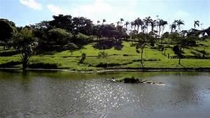 Parque Central - Santo Andr U00e9
