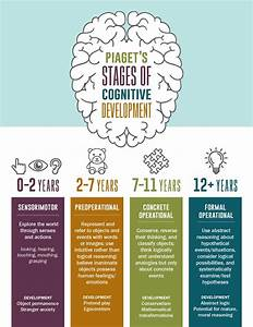 Piaget U0026 39 S Four Stages Of Cognitive Development Infographic