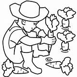 Farmer Coloring Pages Clipart Carrot Plant Farm Farmers Cartoon Kid Planting Colouring Learning Cliparts Carrots Fun Boy Clip Illustrations Insurance sketch template