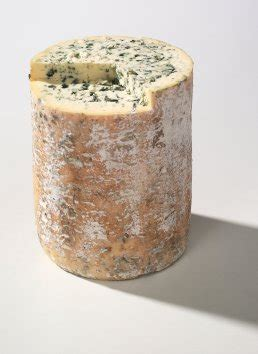 fourme a pate pressee sarl fromagerie le montcineyre les fromages d auvergne