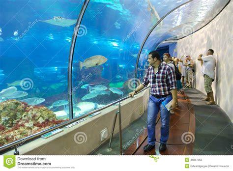 aquarium de barcelone adresse aquarium barcelona spain editorial image image 45887855