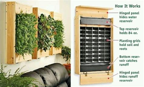 Grow In Small Spaces With The Wall-hanging Plant Holder