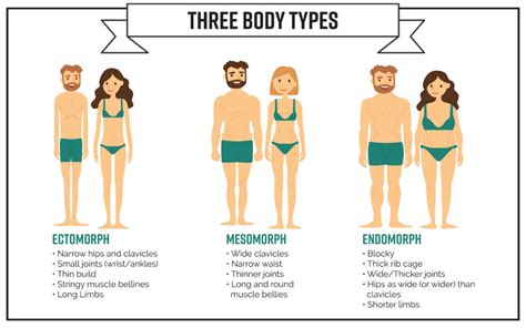 part 2 what is your body type how to lose weight