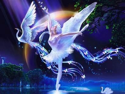 Screensavers Swan Lake Dream Screensaver Mobile Animated