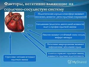 Поражение сосудов мозга инсульт инфаркт гипертония гипотония
