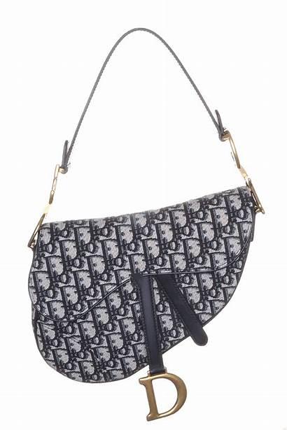 Dior Bag Saddlebag Saddle Iconic Oblique Monogram