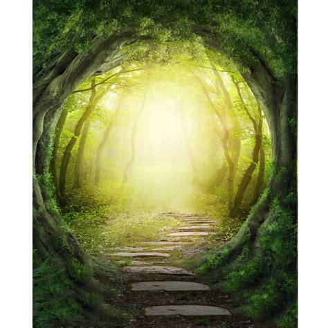 woodland path printed backdrop backdrop express