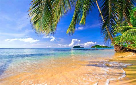 Tropical Wallpaper Desktop ·①