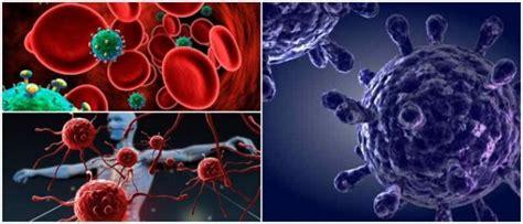 inmunodeficiencia definicion tipos causas sintomas