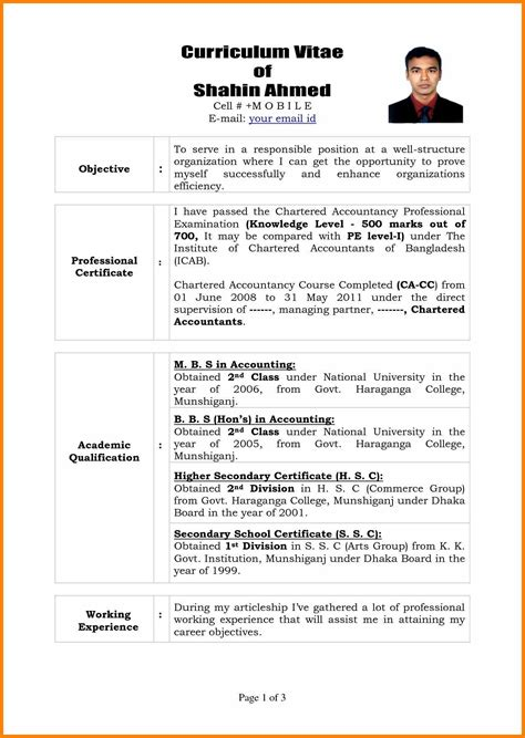 It Professional Resume by 16 Cv For It Professional Waa Mood