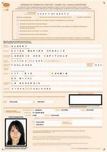 Demande De Duplicata De Permis De Conduire : cerfa permis de conduire ~ Gottalentnigeria.com Avis de Voitures