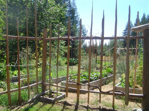 build  deer prooffunky garden enclosure fence