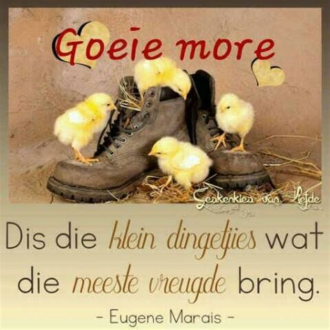 254 best morning wishes on goeie more afrikaans and goeie nag