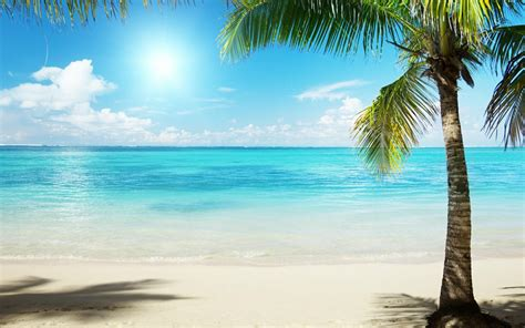 Tropical Beach Images  Hd Wallpapers Pulse