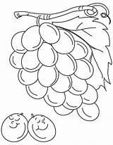Grapes Coloring Pages Drawing Grape Sleeping Colorluna Luna Cute sketch template