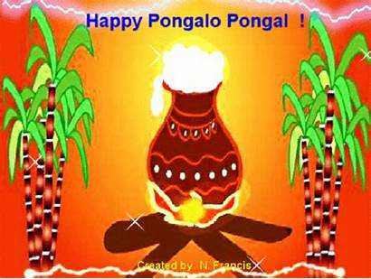Pongal Happy Tamil Animation 2050 Greetings Cards
